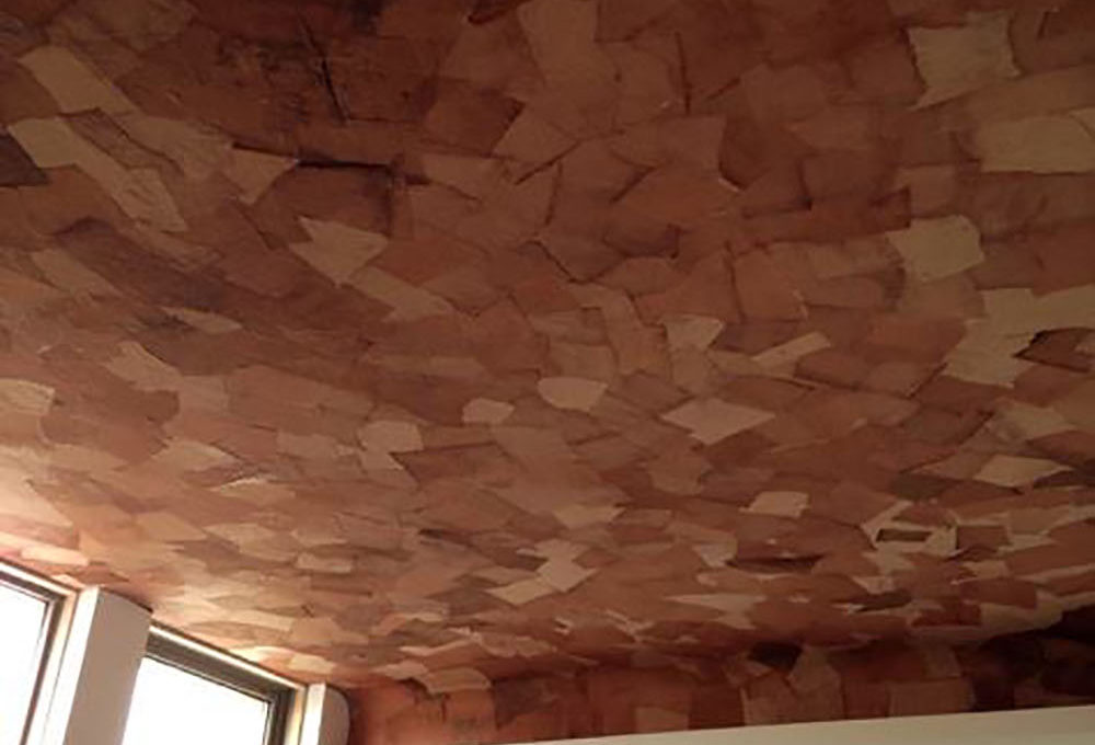 天井に柿渋和紙を使用